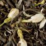 thé vert jasmin chung chao