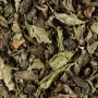 Thé Vert Parfumé Menthe Touareg - 24 Sachets Cristal Suremballés