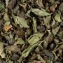 thé vert menthe touareg