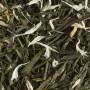 Thé Vert Parfumé - Kiwi Fukuyu