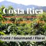 café costa rica vallée centrale