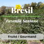 Brésil fazenda santana