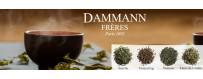 Vente de thé Dammann Frères au meilleur prix !