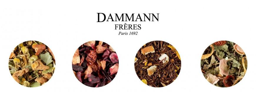 Grand choix d'infusions Dammann Frères chez Secret des Arômes