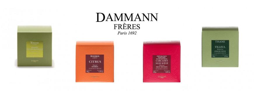 Découvrez nos infusions en sachet de la maison Dammann Frères